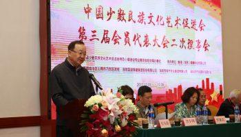 中國少數民族文化藝術促進會第三屆會員代表大會二次理事會在深圳召開